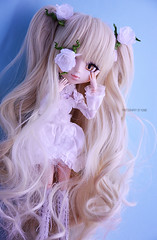 Kirakishou, The Seventh Doll | Pullip Kirakishou 2014 (Kumo~Milk^^) Tags: doll eyelashes wig groove gloss pullip 2014 rozenmaiden obitsu eyechips junplanning rewigged kirakishou kirakisho rechipped kirakishou2014