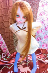 ( )  (nanatsuhachi) Tags: doll bjd  luts agatha kdf kiddelf lutsdoll 2015winterevent romanticbody