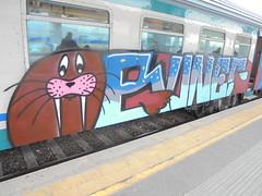 813 (en-ri) Tags: train writing torino graffiti grigio blu walrus marrone walross bunes morsa tricheco odobenus rosmarus