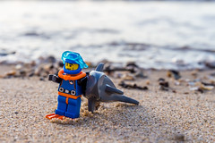 I think I got bit by something (Ballou34) Tags: sea beach water canon toy toys photography eos rebel shark sand flickr lego stuck plastic diver afol 2016 minifigures toyphotography 650d t4i eos650d legography rebelt4i legographer stuckinplastic ballou34