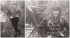 12036465_1092628220780177_1132980294519144295_n (artaud.mirella) Tags: brasil chelsea sharp movimento paulo sao oi rac skinhead rash artaud skinheads mirella skingirl skinheadgirl chelseahair mirellaartaud mihartaud skinheadsbrasil sceneartauds chelseawoman