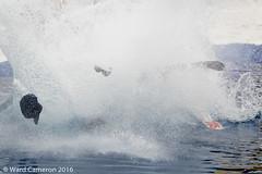 wardc_160523_4608.jpg (wardacameron) Tags: canada snowboarding skiing alberta banffnationalpark sunshinevillage slushcup michaelrogne pondskimmingsports costumerickytheredneck