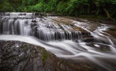 How Sweet It Is (michellelynn) Tags: oregon creek waterfall spring sweet trail cascade