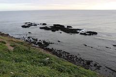 IMG_1149 (fernanda.pallante) Tags: praia faro uruguay teatro playa montevideo farol puntadeleste puntaballena sols losdedos uruguaynatural