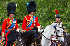 The Royal Colonels (Mikepaws) Tags: city uk greatbritain summer horses horse london festive army unitedkingdom britain military traditional capital ceremony royal william parade celebration event british procession britisharmy wills horseback royalty monarchy equine themall royalfamily centrallondon ceremonial 2016 troopingthecolour queensbirthdayparade unitedkingdomofgreatbritain trooping irishguards greaterlondon dukeofcambridge welshguards officialbirthday queenat90 hmhouseholdregiments