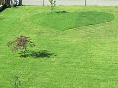 Gardener in love (vittorio vida) Tags: green love grass garden funny heart lawn mow gardener