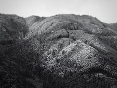: A Mountain in Gero (Jon-F, themachine) Tags: winter mountain mountains japan asian asia olympus gero  nippon japo oriental orient fareast   gifu  nihon omd hida japn 2016  m43  mft    gifuken    geroonsen mirrorless    micro43 microfourthirds  ft xapn jonfu   mirrorlesscamera snapseed   em5ii em5markii