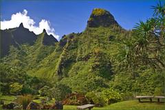 Bali Ha'i -- The Makana Mountain Range Above the Limahuli Tropical Botanical Garden Hanalei Kaua'i (HI) October 2014 (Ron Cogswell) Tags: hawaii southpacific balihai kauaihi roncogswell limahulitropicalbotanicalgardenhanaleikauaihi themakanamountainkauaihi balihaithemakanamountainkauaihi themusicalsouthpacific