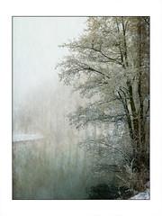 Paysage d'hiver (jaclen) Tags: eau rivire brouillard brume givre
