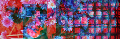 grids and non-grids (dominicotine) Tags: flowers blue red abstract art blend imagemagick blendtrend