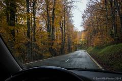 Pasado por agua (SantiMB.Photos) Tags: road autumn espaa rain lluvia carretera otoo esp navarra laza 2tumblr sal18250 izalzu 2blogger uztarrozuztarroze