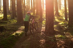 Epic Autumn1 (jannis.dietrich) Tags: wood autumn people sun sunlight me forest downhill epic freeride specialized followme leatt troyleedesigns iamanikon iamspecialized epiclight