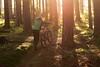 Epic Autumn1 (jannis.dietrich) Tags: wood autumn people sun sunlight me forest downhill epic freeride specialized followme leatt troyleedesigns iamanikon iamspecialized epiclight
