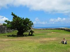 Katsuren Castle (Nelo Hotsuma) Tags: world ocean park castle heritage japan site ruins asia pacific jo unesco limestone 日本 okinawa 沖縄 peninsula ryukyu katsuren uruma amawari