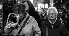 DSC_0747j (M van Oosterhout) Tags: life street people woman man holland men netherlands face women streetphotography human mens straat gezicht manmen straatfotograie