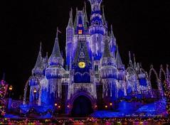 Magic Kingdom (wdwSteve) Tags: christmas nikon magic kingdom disneyworld d7000 sigma1750mmf28