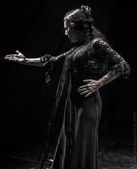 Babel & Amigos (D.Amela) Tags: flamenco babel cornell