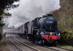 Stormin' (whosoever2) Tags: uk greatbritain england train shropshire rail steam shrewsbury ludlow gb paddington marches 2014 lms stanier black5 45407 44781 cathedralsexpress marshbrook