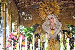 Nuestra Señora de la Esperanza Macarena (Fritz, MD) Tags: procession intramuros intramurosmanila prusisyon grandmarianprocession marianprocession nuestraseñoradelaesperanzamacarena marianevents igmp2014 intramurosgrandmarianprocession2014