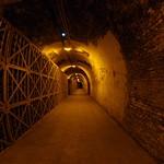 2014-11-22 Visite Ruinart et Cathédrale de Reims 094 thumbnail