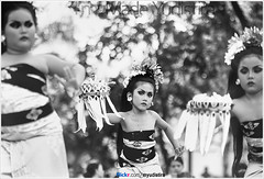 Little Balinese (Bali Freelance Photographer) Tags: life people bali nature beauty canon indonesia eos photo foto stock culture daily cultural alam budaya balinese culturalevent myudistira madeyudistira myudistiraphotography