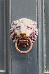 Bruges - Brgge (Jrgen Kornstaedt) Tags: lion grau ring bruges flanders belgien knockers trklopfer brgge