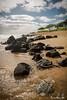 Kauai Beach.jpg (JohnWill1970) Tags: ocean usa beach hawaii rocks kauai kauaibeach