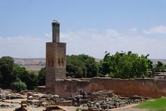 Chellah (Keith Mac Uidhir 김채윤 (Thanks for 4.5m views)) Tags: marocco marruecos marokko marrocos fas marocko marokkó モロッコ 摩洛哥 maghribi marako марокко 모로코 라바트 μαρόκο मोरक्को ラバト рабат ราบัต ประเทศโมร็อกโก 拉巴特 ραμπάτ mòrókò maruekos