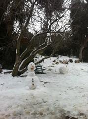 Snow Storm in Israel January 2015 (Israel Defense Forces) Tags: winter snow israel snowman jerusalem soldiers idf snowcat idfsoldiers northernisrael israeldefenseforces homefrontcommand