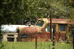 4206 Dorrigo NSW  (1) (G train 79) Tags: 42 4206