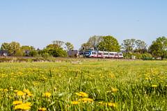 IMG_0058 (BildFlut) Tags: sun train hamburg rail signal neumnster akn spotter