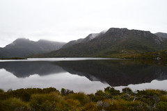 Dove Lake and Cradle Mountain (dracophylla) Tags: tasmania dovelake cradlemountain cradlemountainlakestclairnationalpark