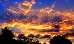 The Magic Sky (elliott.lani) Tags: blue color colour nature beautiful silhouette yellow clouds sunrise outdoors skies purple bright silhouettes colourful lani atmospheric allrightsreserved naturephotography kingstonsunrise scenictasmania elliottlani lanielliott tasmaniansunrise
