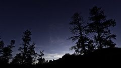 02469169-76-Landscape Dusk in the Dixie National Forest Utah-1 (Jim There's things half in shadow and in light) Tags: tree nature silhouette landscape utah brycecanyon redcanyon dixienationalforest canon5dmarkiii tamronsp1530mmf28divcusd