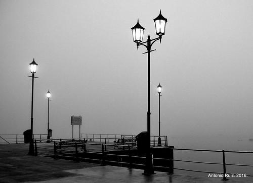 Farolas y niebla matinal.