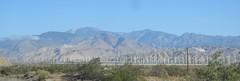 May 22, 2016 (3) (gaymay) Tags: california gay mountain love fun desert riverside palmsprings windmills games fairmountpark windturbines riversidecounty bestbuyolympics
