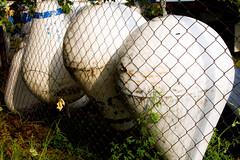 Retired Buoys (TPorter2006) Tags: lake oklahoma water may nautical murray navigation buoy 2016 lakemurray buoyant tporter2006