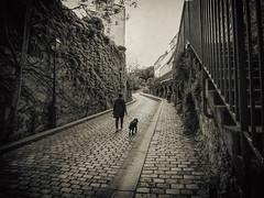 Rue Saint Vincent, Montmartre (Dale Michelsohn) Tags: street leica old paris france sepia french monotone montmartre cobbles ruesaintvincent dlux4 dalemichelsohn parismay2016