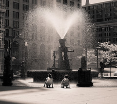 (Dancing with Reality) Tags: street friends summer sun love water fountain kids lights montreal streetphotography oldmontreal oldport palaisdescongress
