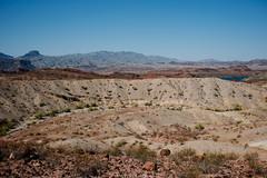 5R6K2565 (ATeshima) Tags: arizona nature havasu