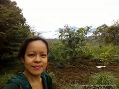 LivingMarjorney-Binahon-Agroforestry-Farm-Bukidnon (57) (livingMarjorney) Tags: forest travels farm tourist destination philippine bukidnon organicfarm organicagriculture binahonagroforestryfarm bukidnonphilippines agriculturaltraininginstitute