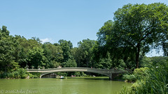 Bow Bridge in Central Park (John Diven) Tags: nyc newyorkcity centralpark bowbridge