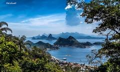 Parque da Cidade - Niteri - Rio de Janeiro (mariohowat) Tags: brazil brasil riodejaneiro natureza niteri parquedacidade