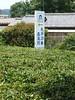 Temple 29 and tea (Stop carbon pollution) Tags: flickr japan 日本 honshuu 本州 saitamaken 埼玉県 chichibu 秩父 34kannonpilgrimage 三十四札所 kantou 関東