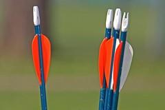 arrows-546842_960_720