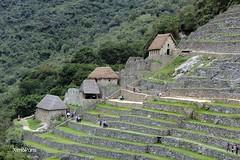 IMG_8873 (XimoPons : vistas 3.350.000 views) Tags: machu picchu cuzco de la cusco machupichu pichu andes machupicchu humanidad patrimonio ximopons2 perucuzcocuscoincaandes perufenacore