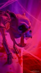 Spooky Times (KWPashuk) Tags: party dog halloween skeleton nokia flickr creepy 1020 lumina phoneography kwpashuk kevinpashuk