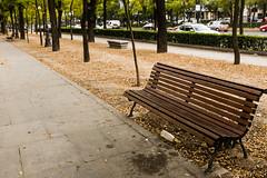 _DSF2954 (Antonio Balsera) Tags: madrid parque espaa banco paseo comunidaddemadrid viernes