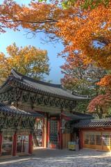 Autumn at Gilsangsa, Seoul (mbphillips) Tags: temple asia korea seoul fareast buddism buddist         seongbukgu gilsangsa   mbphillips