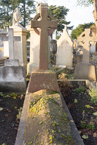 Mount Jerome Cemetery & Crematorium is situated in Harold's Cross Ref-100434